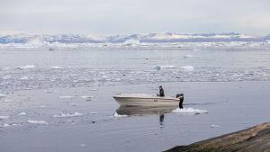 Kalastaja veneessään Ilulissatin edustalla