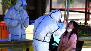 Två hälsovårdare i skyddsdräkt coronatestar en kvinna