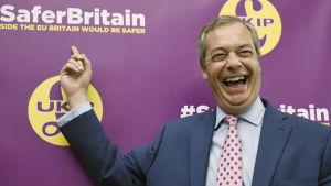 Nigel Farage, som är partiledare för det euroskeptiska partiet UKIP, är en av de synligaste frontfigurerna för Brexit-kampanjen.