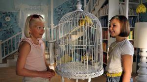 Onneli ja Anneli katselevat kanarialintuja.