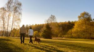 En man och en kvinna går på ett fält med en hund.