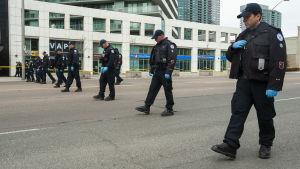 Polisen går i led för att söka efter bevismaterial längs Yonge Street.