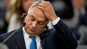 Ungerns premiärminister Viktor Orban reagerar.  Han har fört sin vänsterhand till pannan och blundar.