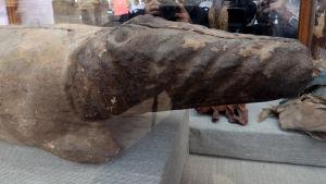 gammal träkrokodil som hittats i Egypten.