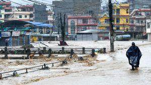 översvämning i Nepal.