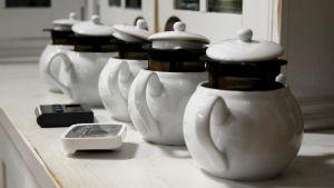 Valkoisia teekannuja rivissä.