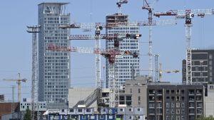 Många lyftkranar runt nya skyskrapor vid Fiskehamnen i juni 2020 i Helsingfors