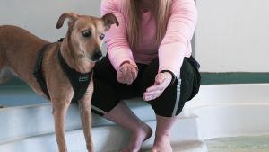 Hunden Lucky står med Stefanie Lindroos vid simbassängens kant.
