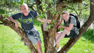 Aurinkoisen pihan omenapuussa roikkuu kaksi nuorta hymyillen.