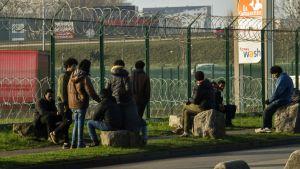 Migranter i Calais 12.1.2018