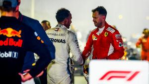Lewis Hamilton och Sebastian Vettel skakar hand.