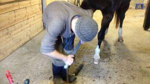 Oskar Damén raspar en hästhov.