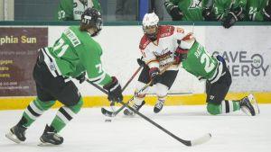 Tre damspelare i kanadensiska ligan CWHL.