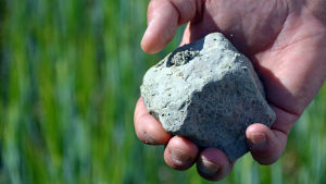 En bit mjäla, en slags lera, som hålls i handen av en person.