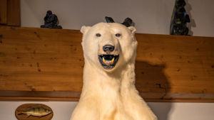 En uppstoppad isbjörn med öppen mun.