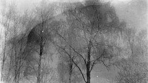 Vintrigt landskap, foto ur Edith Södergrans arkiv
