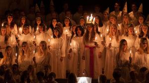 Stor luciakör med lucia, tärnor och stjärngossar som sjunger med ljus i händerna.