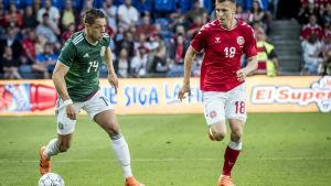 Javier Hernandez utmanar Lukas Lerager i genrepet mot Danmark.