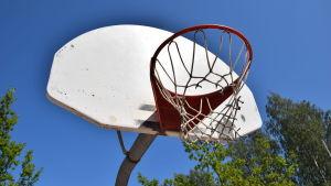 En basketkorg mot en blå himmel och gröna träd.
