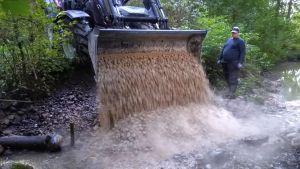 En traktor häller grus i en å för att öringen ska kunna leka där.