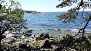 En stenig strand på en ö i skärgården.