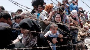 syriska flyktingar vid tuskiska gränsen