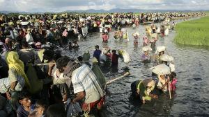 Rohingyaflyktingar tar sig från Burma till Bangladesh
