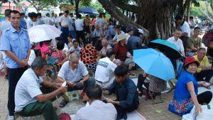 Kinesiska pensionärer spelar kort i park