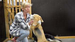ann-britt schüler myser med hundarna som besöker hunddagiset