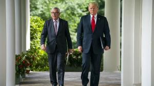 Donald Trump och Jean-Claude Juncker på väg till sin gemensamma presskonferens framför Vita huset i Washington.