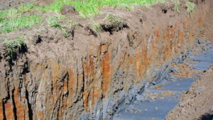 Diket som forskarna har grävt. Det svarta är sulfatleran.