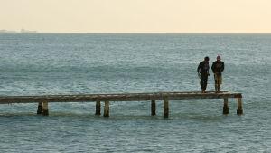 Två män står längst ute på en brygga med horisonten i bakgrunden