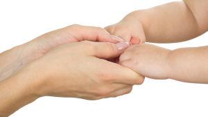 Bild på en vuxen persons och ett barns händer.