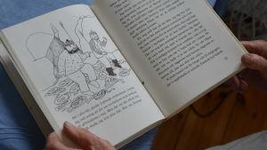 Närbild på en Jakob Dunderskägg-bok med en illustration.