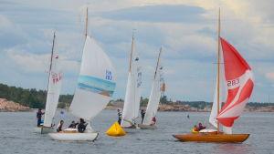Flera segelbåtar tar sig fram i snål vind.