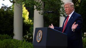 President Donald Trump talar i rosenträdgården vid Vita huset tisdagen den 14 juli 2020.