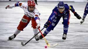 HIFK:s Aku Ojanen och Botnias Juri Schreck kämpar om en boll med klubbarna i kors.