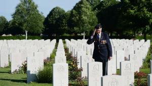 Brittisk krigsveteran gör honnör.