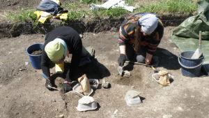 Arkeologiska utgrävningar vid Raseborgs slott sommaren 2014.