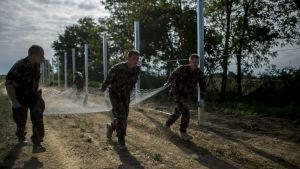 Soldate bygger staket vid gränsen till Kroatien