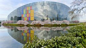 Europaparlamentets officiella säte, Louise Weiss-byggnaden i Strasbourg.