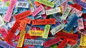 Lappar där det står tack på olika språk.