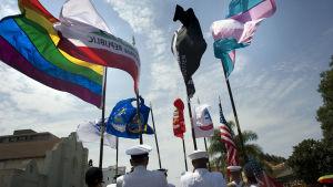 Militärer deltar i Prideparaden i San Diego i mars 2017.