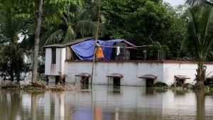 Invånare i Indien bosätter sig tillfälligt på ett tak på grund av översvämningar.