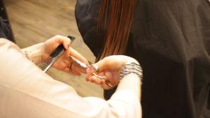 En frisörs hand syns på bilden. Klipper en kunds långa bruna hår.
