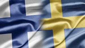 Finlands och Sveriges flaggor.