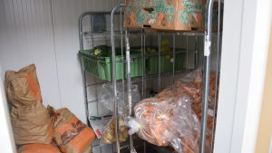 Kylrum med rotsaker
