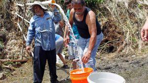 Vatten vid en källa i Corozal i Puerto Rico.
