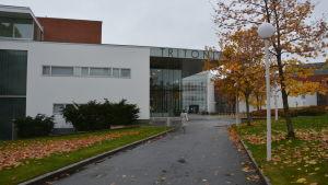 Vetenskapsbiblioteket Tritonia