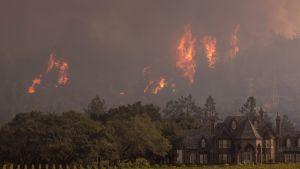 Svåra markbränder i Kalifornien.